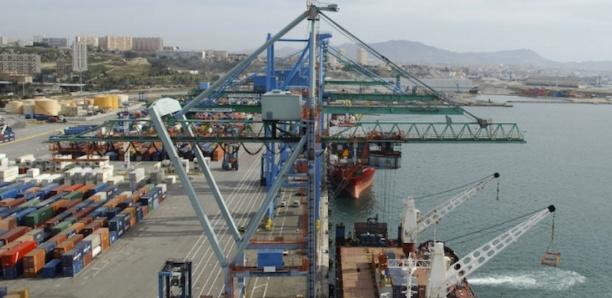 Dubaï Port World : les transitaires dénoncent le nouveau système de l'exploitant portuaire