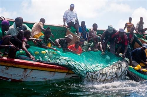 TENSION A LA FRONTIERE NORD: Un pêcheur de Guet Ndar atteint par balle, 25 autres arrêtés par les garde-côtes mauritaniens