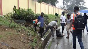 Éco-citoyens:Comment organiser une opération de ramassage des déchets sur la voie publique chaque dimanche?