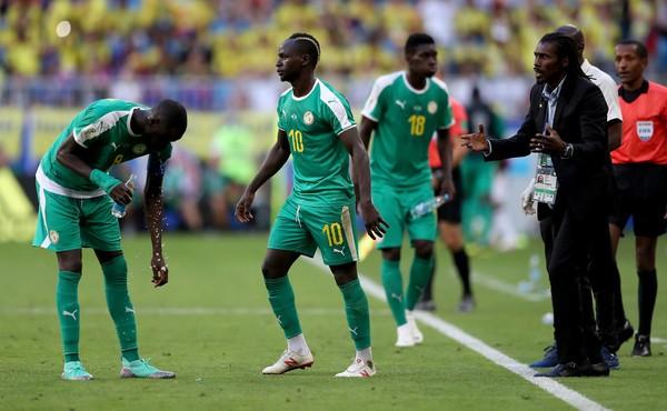 CLASSEMENT FIFA DU MOIS DE FEVRIER:  Le Sénégal toujours leader en Afrique
