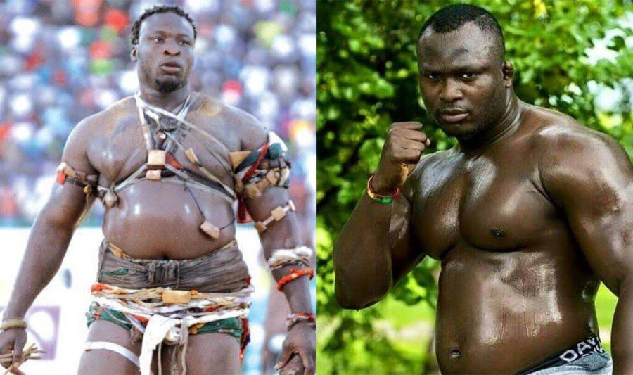 COMBAT ROYAL : Modou Lô et Ama Baldé s'affronteront le jour de Noël