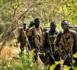 DRAME DANS LE DEPARTEMENT DE BIGNONA: Des hommes armés tuent froidement le chef de village de Domondir, Abdoulaye Sagna, et son neveu