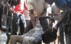 POUR FORCER SON LOCATAIRE DJIBY GUISSE A QUITTER SA MAISON: Cheikh Diop le surprend, l'assomme d'un coup de barre de fer à la nuque, le traine sur la terrasse et le projette dans le vide