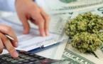 Médias : Cash Investigation se penche sur le business du cannabis
