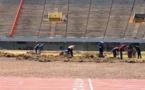 CHEIKH NDIAYE, SPECIALISTE EN PELOUSE : «Ce qu'il y a au stade LSS, ce n'est pas du gazon, mais de la mauvaise herbe»