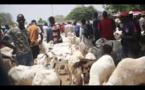 IL RISQUE 10 ANS DE RÉCLUSION CRIMINELLE: Moustapha Diouf accuse le berger familial de son village natal de Ngoundiane
