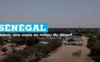 Sénégal : Ndem, une oasis au milieu du désert