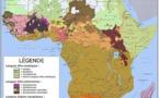 Liste des groupes ethniques d'Afrique avec environ 2 000  langues .