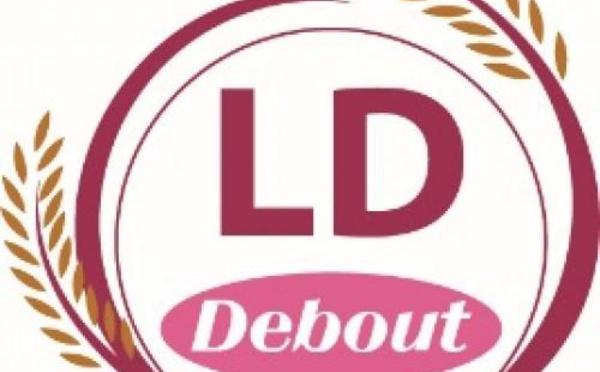 PROJET DE DECOUPAGE ADMINISTRATIF  La Ld Debout tire sur l'Etat et parle de stratégie électorale