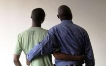 Affaire des homosexuels de liberté 4: le pédé Ibrahima Ndiaye assume et avoue avoir couché avec Claude André Ayna