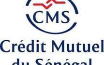 Crédit mutuel du Sénégal Les travailleurs, «au front» ce samedi, vont exposer les cafards de leur Dg