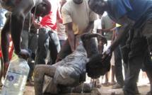 INSOLITE A TALLY MAME FASS MBAO: Un voleur de bonbonne de gaz échappe à la vindicte populaire grâce aux eaux boueuses